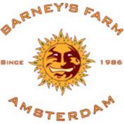 Barneys Farm Amsterdam