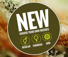 Seedsman Free Seeds Promo