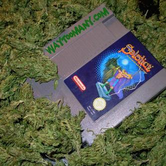 Get Paid to Smoke Weed & Play Video Games - Are you a Grandmas Boy?
