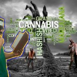 5 Cannabis Books you should READ before the Apocalypse