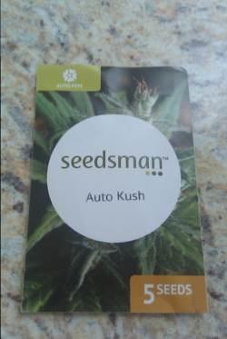 Seedsman Auto Kush