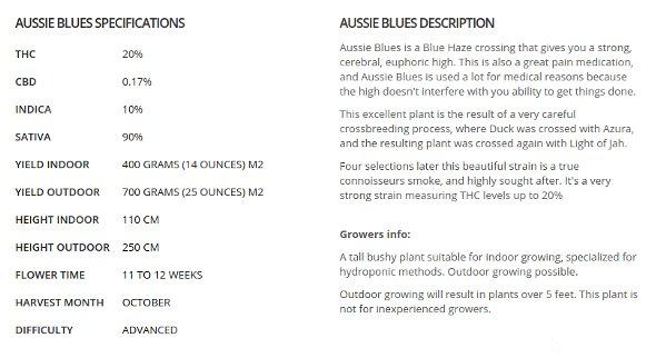 Aussie Blues Description